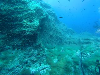 Buceo en Columbretes Sep-2020